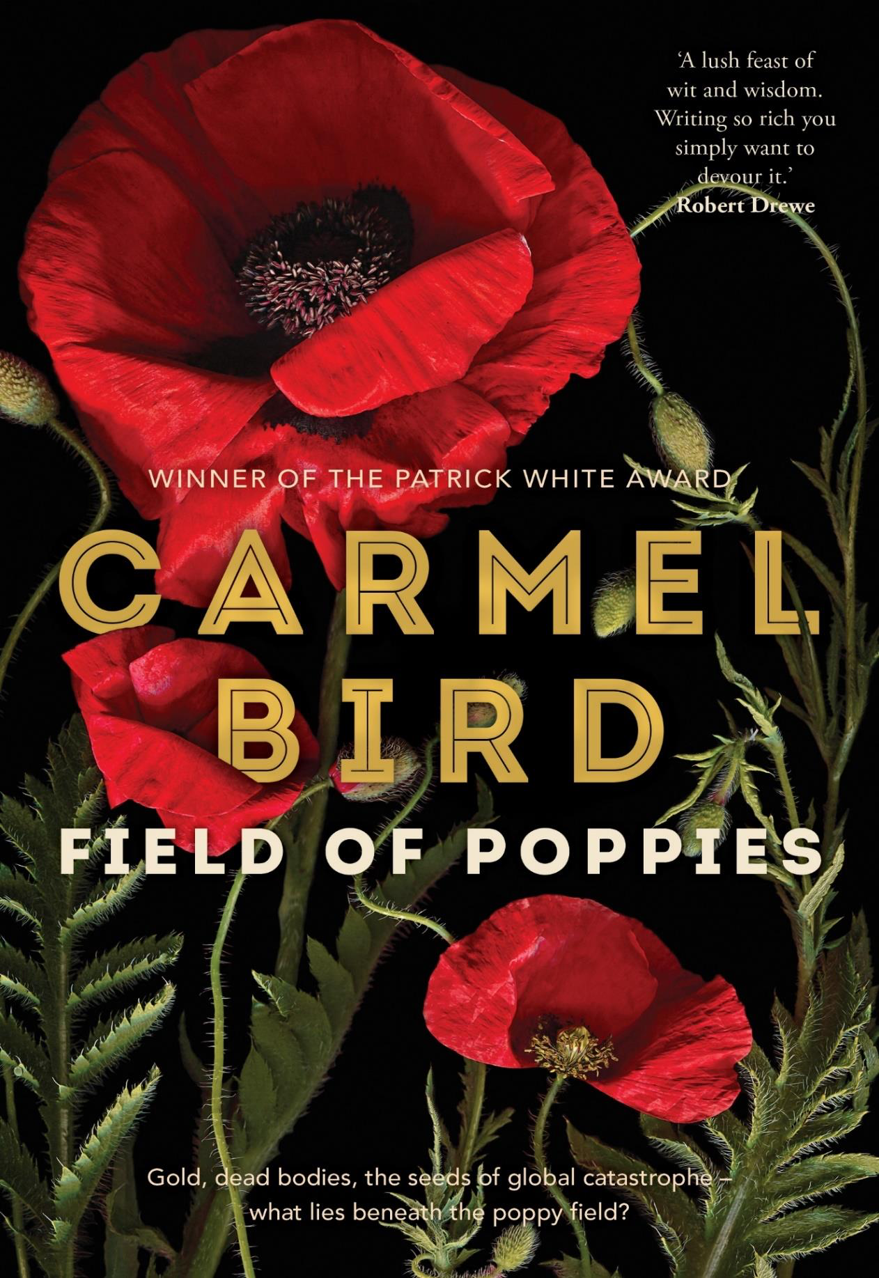 Image from ReadingNotes-FieldOfPoppies-CBird-v2 (2), page 1.png